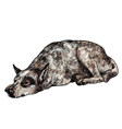 Sleepy lonely dog vector image vector image