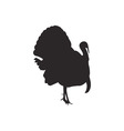 Turkey silhouette vector image