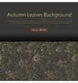 Background with different tree leaves vector image vector image