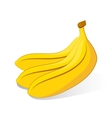 bunch of bananas on white background vector image vector image