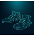 eps 10 of Sport shoes for vector image vector image
