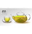 glass teapot and cup with green tea vector image vector image