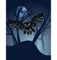 Owl in the Night Forest5 vector image vector image