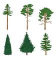 set cartoon pin trees cedar spruce vector image vector image