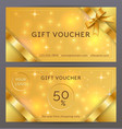 set front and back sides luxury gift vector image