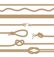 set realistic brown ropes and knots vector image