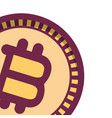 bitcoin isolated icon vector image