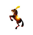 Brown awesome circus horse with red ribbon and