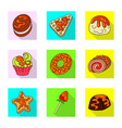 confectionery and culinary vector image
