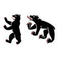 heraldic bears vector image vector image