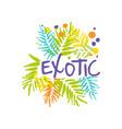 original exotic travel logo template vector image