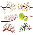 Tree branch with leaves and flowers set vector image vector image