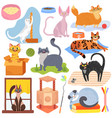 cats different breeds set stickers with vector image vector image