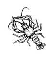 concept of lobster hand drown vector image vector image