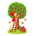 girl on the stairs collects apples vector image