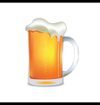 Light beer mug vector image vector image