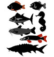 set of fishes vector image vector image