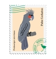 stamp with image of parrot vector image vector image