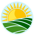 symbol of sun and field vector image vector image