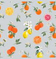 watercolor citrus pattern vector image vector image