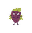with funny grape character vector image vector image