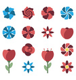 Set of different flowers vector image