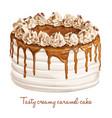 tasty creamy caramel cake vector image