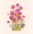 bouquet purple asters in watercolor botanical vector image vector image