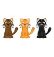 Cartoon tiger cats vector image