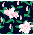 floral seamless pattern with peony flowers