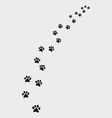 footprints cat vector image vector image