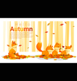 Hello autumn background with foxes vector image vector image