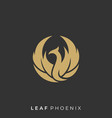 leaf with phoenix template vector image