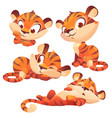 set cartoon baby tiger cute animal cub character