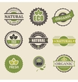 Ecology organic icon set Eco-icons vector image vector image