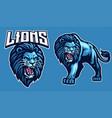 mascot sport lion in set vector image vector image