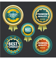 Premium quality and best choice label vector image vector image