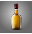 Blank realistic whiskey bottle isolated on grey vector image vector image