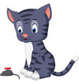 cute cat cartoon playing mouse vector image vector image