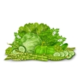 Green vegetables mix on white vector image vector image