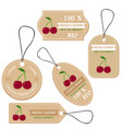 labels with various fruitsfor cherry vector image vector image