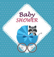 baby shower card with cute raccoon in cart vector image vector image