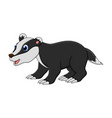 cartoon badger animal isolated on white background vector image