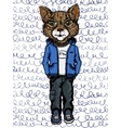 cat wearing casual clothes vector image vector image