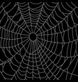 cobweb isolated on black background spiderweb vector image vector image