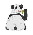 cute panda bear eating stem bamboo funny wild vector image