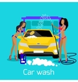 Girl Car Wash Flat Concept Icon vector image vector image