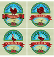 icons on vintage background rooster turkey goose d vector image vector image