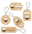 labels with various fruitsfor coconut vector image vector image