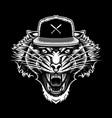 roaring tiger in snapback art vector image vector image